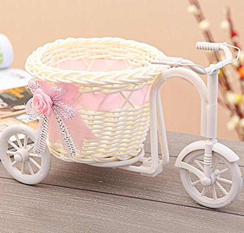 Vase Lam - Flower Vase - Pink Bike Rattan Vase Basket Flowers Meters Bowknot Flower Flowerpots Containers Product - Home Display Insert Hanging Corner Gold Beetle Tall Rings Indoor Rectangle Artif