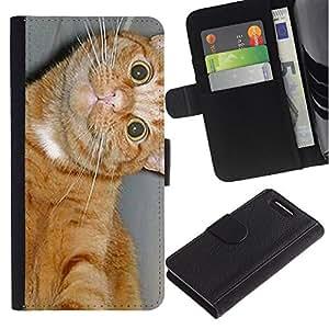 American Shorthair Feline Cat Happy - la tarjeta de Crédito Slots PU Funda de cuero Monedero caso cubierta de piel Sony Xperia Z1 Compact D5503