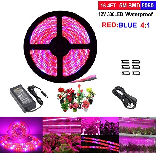 LED Strip Light, Topled Light Plant Grow Light with Power Adapter, 5050 SMD Waterproof Full Spectrum Red Blue 4:1 Rope Lamp for Aquarium Greenhouse Hydroponic Plant Veg Garden Flowers (5 M)