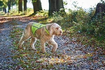 reflektierend Hunter Hunde-Warnweste
