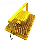 100w led explosion-proof light flood light with