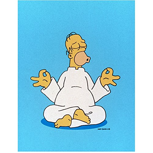 The Simpsons (TV Series 1989 - ) 8 Inch x 10 Inch PHOTOGRAPH One Chance (2013) Homer Doing Yoga kn