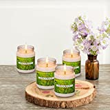 Natural Luxury Citronella Mosquito Repellent Candle,Soy Wax Mosquito Bug Repellent Decorative Glass Jar – 48 Hour Burn – Naturally Repels Insects with Essential Oils – 6.8 oz Outdoor Indoor (4 Pack)