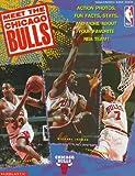 Meet the Chicago Bulls, Brendan Hanrahan, 0590973274
