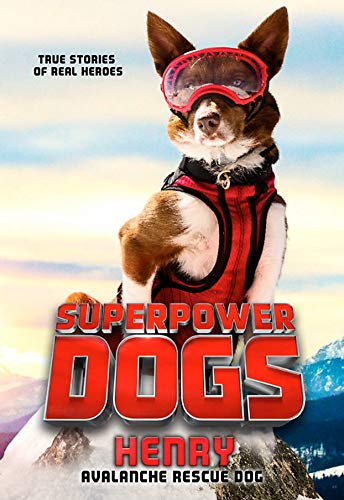 Superpower Dogs: Henry: Avalanche Rescue Dog