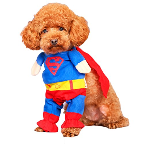 [BlueSpace Pet Costume Dog Cat Superman Pets Suit Halloween Costumes Pets Clothing for Small Dogs and Cats, Perfect for Halloween Christmas and Theme Party, XL] (Dog Superman Costume Xl)