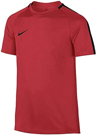 NIKE Academy Camiseta de Niños, Infantil, 832969-696: Amazon ...
