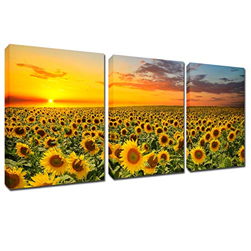 Sunflowers Painting Wall Art Canvas - Sunshine 3 Panles Framed Pictures Florals Giclee Prints Modern Home Decor Sunset Landscape Artwork Yellow Flowers for Living Room Kitchen Ready to Hang 12x16inch (Set Wall Canvas)