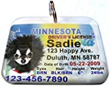 Minnesota State Drivers License Personalized for Dog's and Cats by ID4PET (Regular 1.5'' x 1.125'')