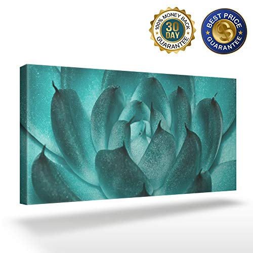 OUR WINGS Canvas Print Wall Art Decor Blue Green Succulents Closeup Wall Art Painting The Picture Print On Canvas for Home Modern Decoration 8x16in]()