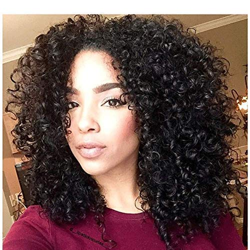 ENTRANCED STYLES Synthetic Curly Wig For Women Kinky Afro Wigs for Black Women Full Wigs Heat Resistant Fiber (280g 14)