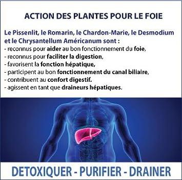 hépadrel - 90 Cápsulas de 400 mg - détox del hígado - Albura de tilo, cardo Marie, Desmodium...: Amazon.es: Salud y cuidado personal