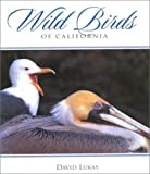 Wild Birds of California, David Lukas, 0944197620