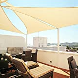 Windscreen4less 8' x 8' x 8' Triangle Sun Shade