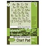 Pacon Ecology Handwriting Pad (PAC945710)