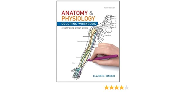 - Anatomy And Physiology Coloring Workbook: A Complete Study Guide By Marieb,  Elaine N. Published By Benjamin Cummings 10th (tenth) Edition (2011)  Paperback: Aa: Amazon.com: Books
