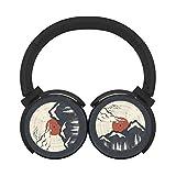 Lp Bluetooth Headphones Under 50s - Best Reviews Guide