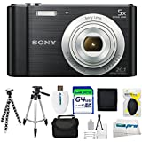 Sony Cyber-shot DSC-W800 Digital Camera (Black) + 64GB Pixi-Advanced I3ePro Accessory Bundle