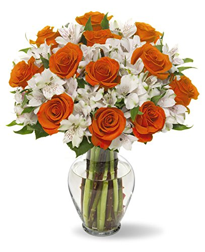 Benchmark Bouquets Dazzling Roses and Alstroemeria