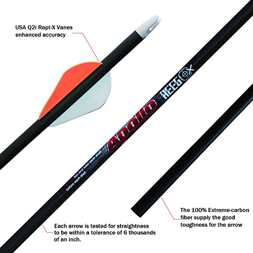 REEGOX Archery Carbon Arrows for Compound and Recurve Bow .006 with 2-inch USA Q2i Vanes(Pack of 6)(sp 300)