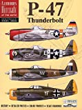 P-47 Thunderbolt - Famous Aircraft of the World No. 1 (6001)