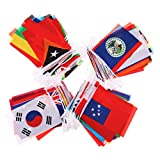 Ensunpal 200 Pcs International Flags 164 Feet 8.2'' x 5.5'' 200 Countries Olympic Flags Pennant Banner for Bar, Party, Sports Clubs, Grand Opening, Festival Events Celebration