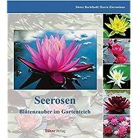 Seerosen: Blütenpracht im Gartenteich