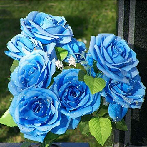 Lioder Seeds Garden - Imported Rare 20/50pcs Rose Bushes All Time Favorites Rose Tropicana Hybrid Tea Rose