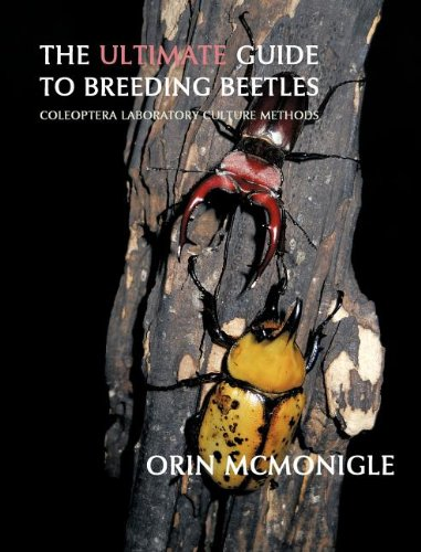 (The Ultimate Guide to Breeding Beetles: Coleoptera Laboratory Culture Methods )
