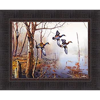 Amazon Com Wallsthatspeak 2 Duck Wild Geese Water Fowl
