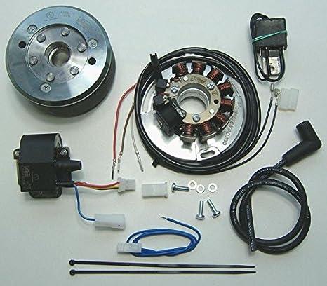 Amazon.com: Powerdynamo VAPE Ignition System Husqvarna 67-71 ... on