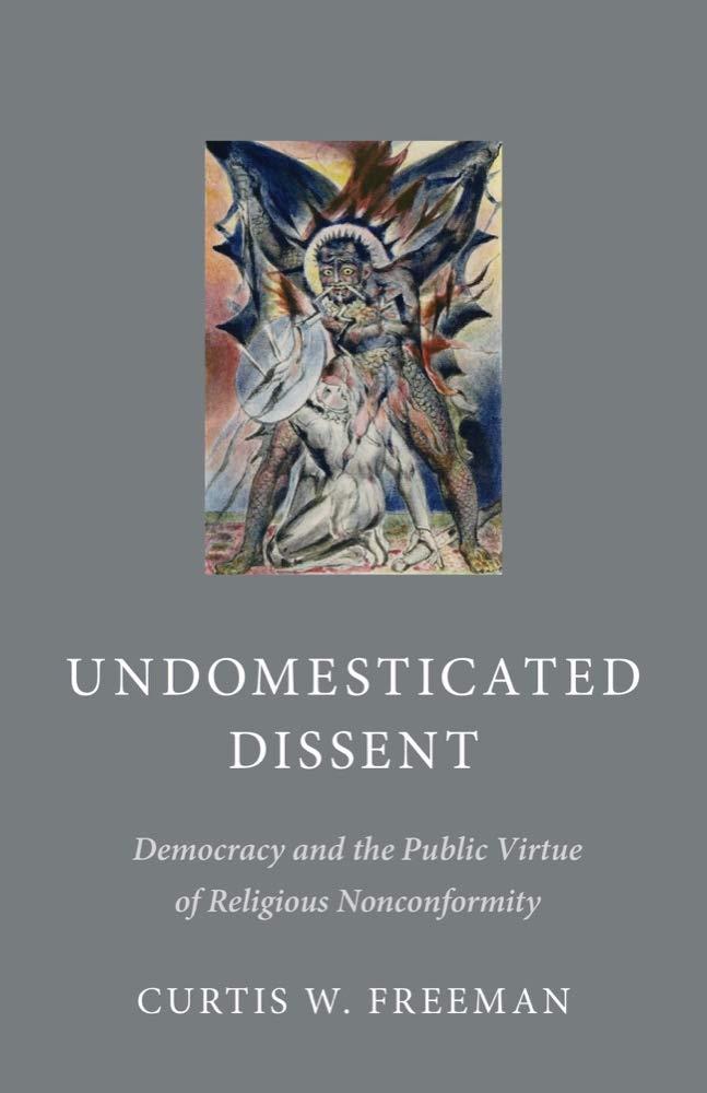Download Undomesticated Dissent: Democracy and the Public Virtue of Religious Nonconformity ebook