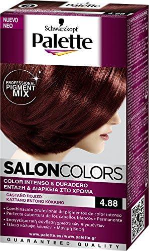 Palette salon colors 4.88 castaño rojizo: Amazon.es: Belleza