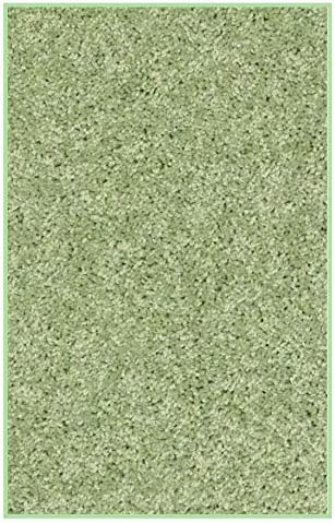 Koeckritz 2 x3 Area Rug. Light Green