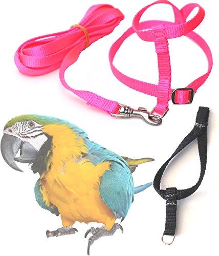 Pink Bird Harness - 9