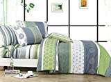 Serene 3pc 100% Cotton Duvet Cover Set : Duvet Cover and Two Matching Shams (Queen) - Best Reviews Guide