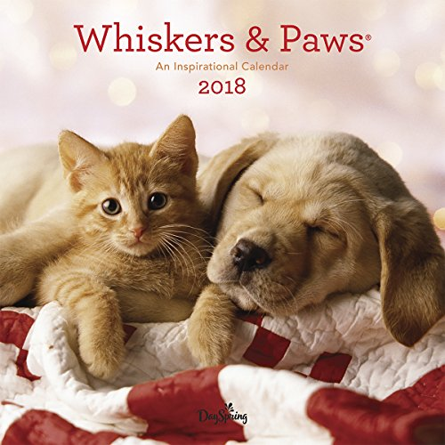 2018 Wall Calendar - Animals - Whiskers and Paws