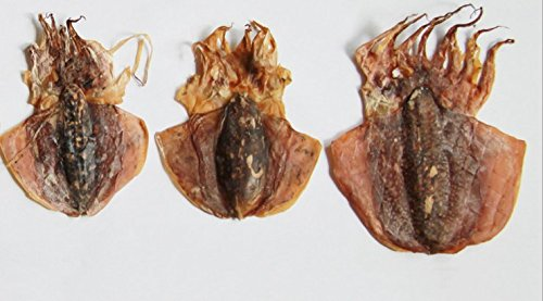 Dried seafood large-sized cuttlefish 750 gram from South China Sea Nanhai