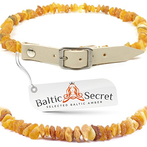 Dog Collar Small / Raw Baltic Amber Gems/GRY28-30/