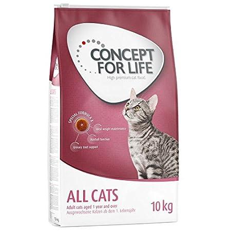 Concepto para la vida todos los gatos. Un alimento saludable para ...