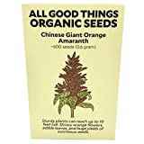 Chinese Giant Orange Amaranth Seeds (~600): Certified Organic, Non-GMO, Heirloom, Open Pollinated Seeds from The United States