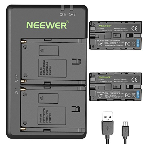 Neewer 2-Pack 6600mAh Li-ion Replacement Battery with USB Charger for Sony NP-F550 570 750 770 970 960 975,Sony Handycams,NW CN160 CN-216 LED Light,NW 759 74K 760 Feelworld,759 74K 760 Field Monitor (Sony X Series Battery And Usb Charger Kit)