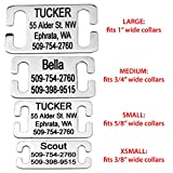GoTags Slide-On Pet ID Tags, Personalized Dog and