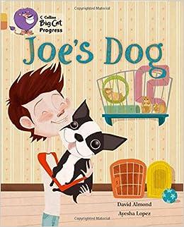 Joe's Dog: Band 09 Gold/Band 12 Copper (Collins Big Cat Progress)