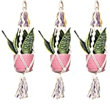 CNSE Colorful Macrame Plant Hanger Indoor Outdoor Hanging Planter Basket Cotton Rope 3 Legs 24.4 inch (3)