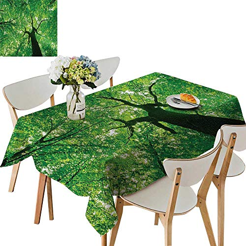 UHOO2018 Eco-Friendly and Safe Body of Tree Evergreen in The Nature Majestic Habitat Symbol Light Square/Rectangle Multi Colors & Sizes,52 x 108inch