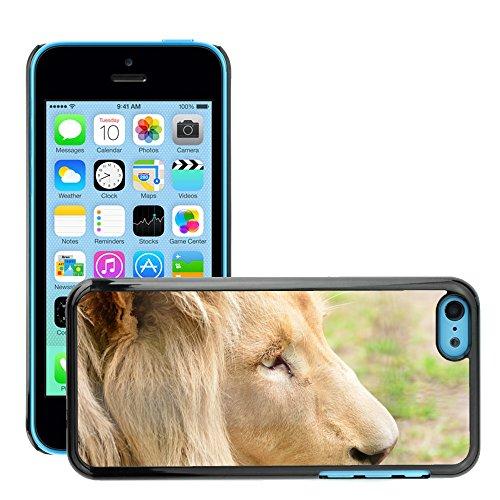 Just Phone Cover Hard plastica indietro Case Custodie Cover pelle protettiva Per // M00139295 Lion Homme Portrait Animal Zoo // Apple iPhone 5C