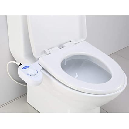 Heated Toilet Seat Amazon.Amazon Com Intelligent Heated Toilet Seat Luxe Bidet Fresh