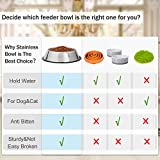 WHIPPY Stainless Steel Dog Bowl for Small,Medium