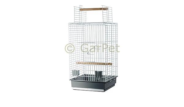 Pájaro jaula loro Papagayo libre Asiento abierto pájaro jaula Soporte opcional: Amazon.es: Productos para mascotas